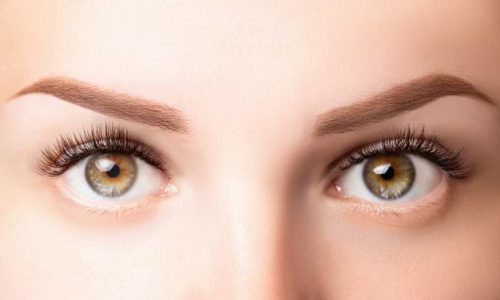 female-eyes-with-long-eyelashes-classic-1d-2d-eyelash-extensions-light-brown-eyebrow-close-up-eyelash-extensions-lamination-biowave-microblading-concept_100739-162